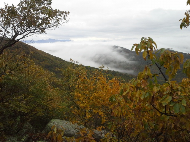 A view from the top of the ridge.