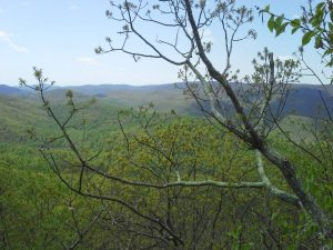 A view from the top of Meadow Mountain.