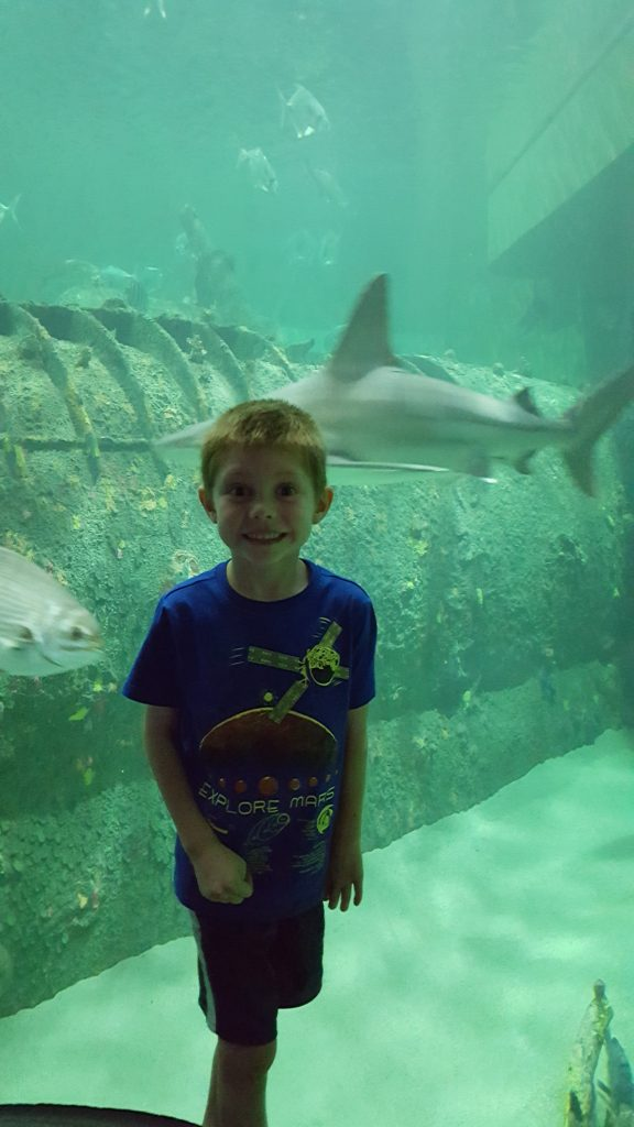 Harlan standing in front of a shark tank.
